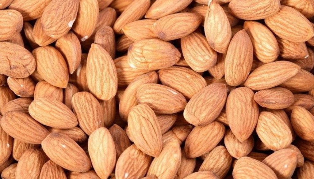 Apricot-Kernels-Apricot-Seeds-Sweet-Apricot-Seeds